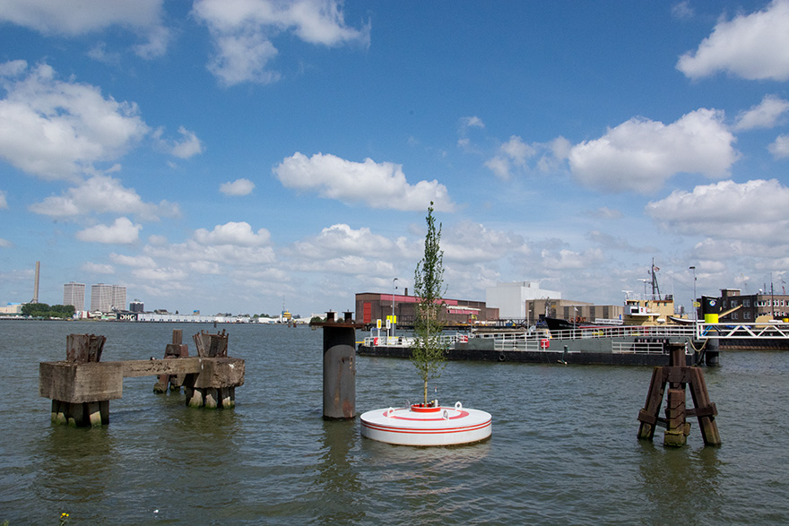 floating-trees-bobbing-mothership-rotterdam-jeroen-everaert-4