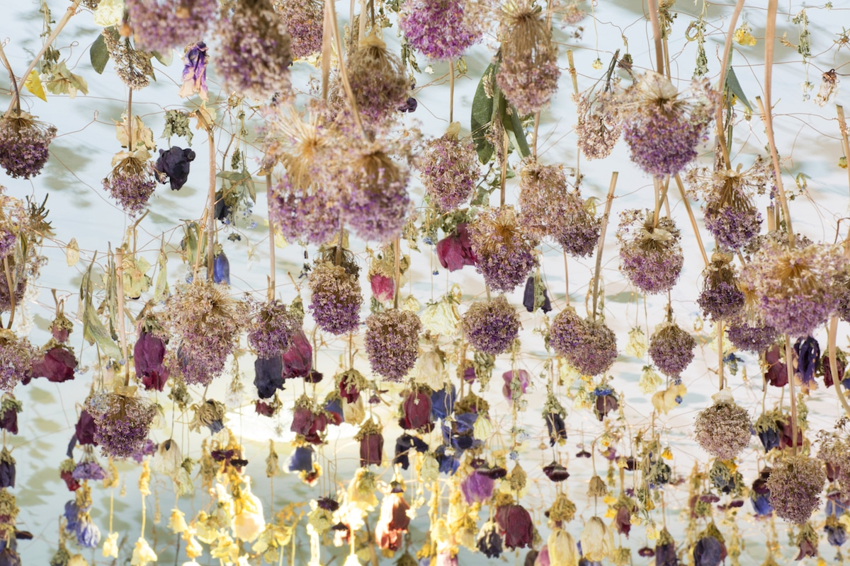flower-installation-art-rebecca-louise-law-20